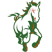 Morgan Park Mustangs